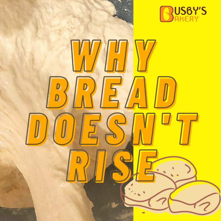 13 Reasons Why My Bread Didn't Rise