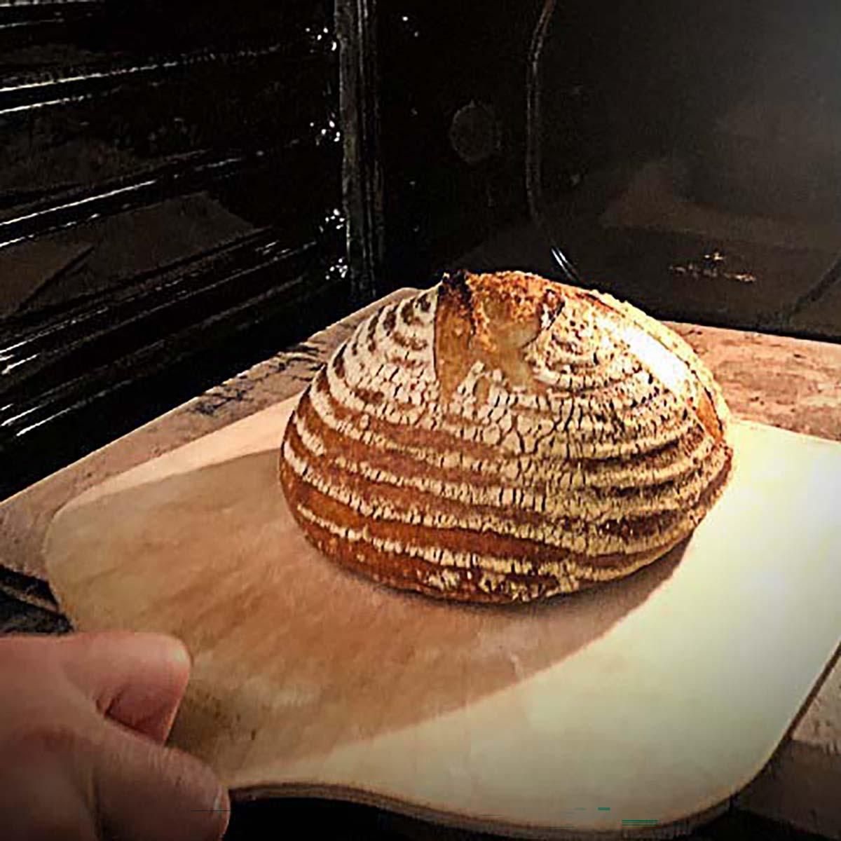 Sourdough bread oven spring