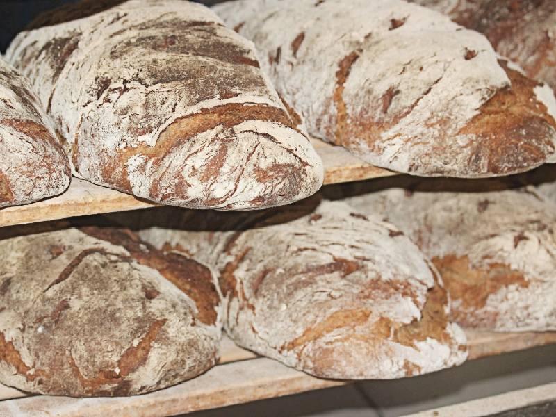 bread made with 00 Italian bread flour